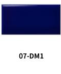 07-DM1