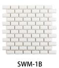 SWM-1B