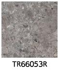 TR66053R