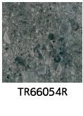 TR66054R