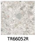 TR66052R