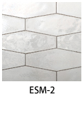 ESM-2