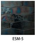 ESM-5
